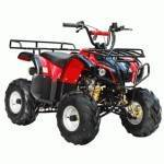 Best Youth ATV ATA 125D TaoTao 125cc e1423091716704