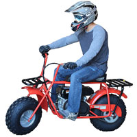 pro pocket bike