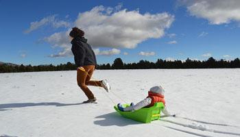 toddler sleds