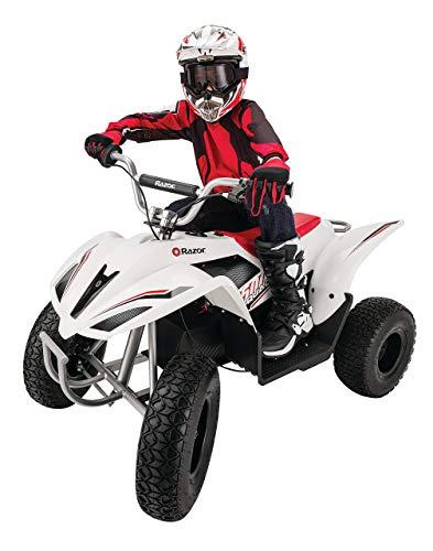 Razor Dirt Quad 500 DLX