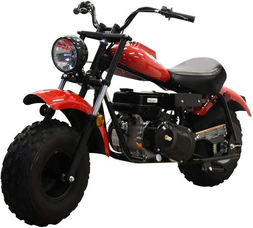 X-PRO Supersized 196CC Youth Mini Bike